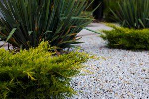 Grys – popularny, klasyczny kamień ogrodowy